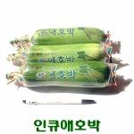 코레마을 꼬레촌 인큐 애호박 5개[2kg]
