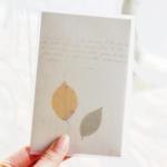 시소 seeso letter set - leaf