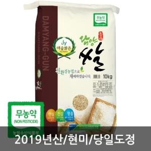 금성농협 담양 대숲맑은 무농약 신동진 현미[10kg]