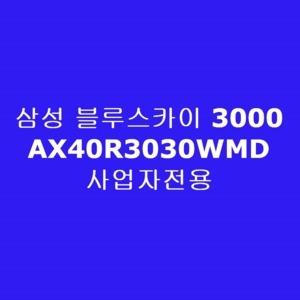 삼성전자 블루스카이 AX40R3030WMD(사업자전용)[사업자전용]
