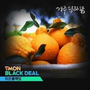 탐라왕영농조합법인 한라봉 중소과[2kg]