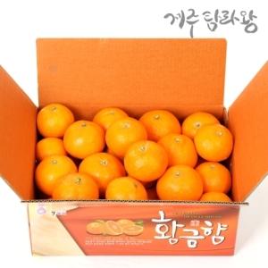 탐라왕농원 진한달콤함 황금향 중과[2kg]