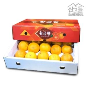 산앤들 황금향 소중과[1kg]