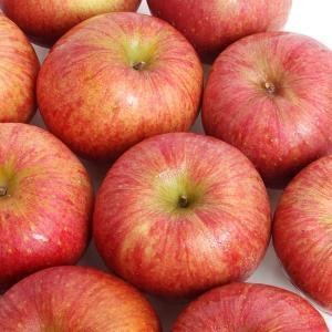 다농이네 가정용 사과 흠과 20~35과[8kg]