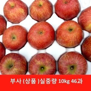 하이만나사과 맛이 진한 부사 46과[10kg]