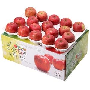 아침햇살농장 청송사과랑 껍질째 먹는 청송햇부사 랜덤과 28~34과[10kg]