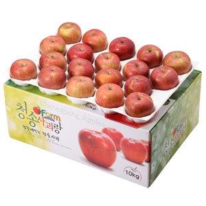 아침햇살농장 청송사과랑 껍질째 먹는 청송햇부사 중소과 38과[10kg]