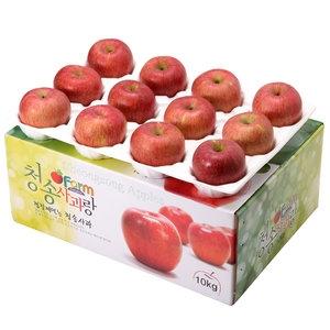 아침햇살농장 청송사과랑 껍질째 먹는 청송햇부사 대과 24~26과[10kg]