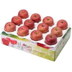 아침햇살농장 청송사과랑 껍질째 먹는 청송햇부사 대과 11~12과[5kg]