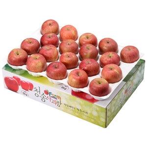 아침햇살농장 청송사과랑 껍질째 먹는 청송햇부사 소과 19~21과[5kg]