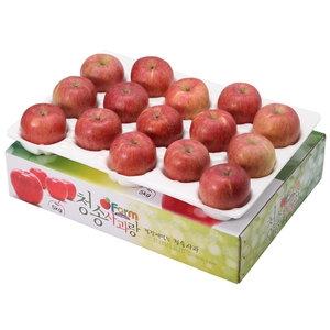 아침햇살농장 청송사과랑 껍질째 먹는 청송햇부사 중과 15~16과[5kg]