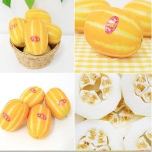 별고을청과 성주 꿀 참외 랜덤과[4.5kg]