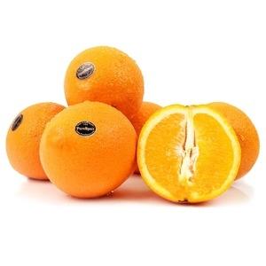 블랙라벨 오렌지 40과
