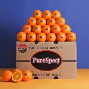 장터할매 퓨어스펙 블랙라벨 오렌지 1박스 대과 33과